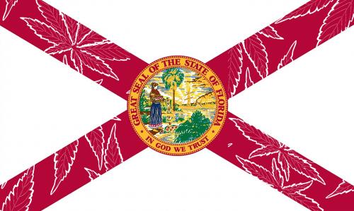 Cannabis Florida