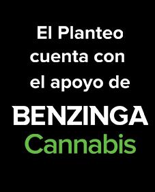 https://elplanteo.com/wp-content/uploads/2020/04/Banner-2.png