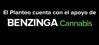 https://elplanteo.com/wp-content/uploads/2020/04/Banner.png