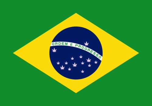Brasil Cannabis