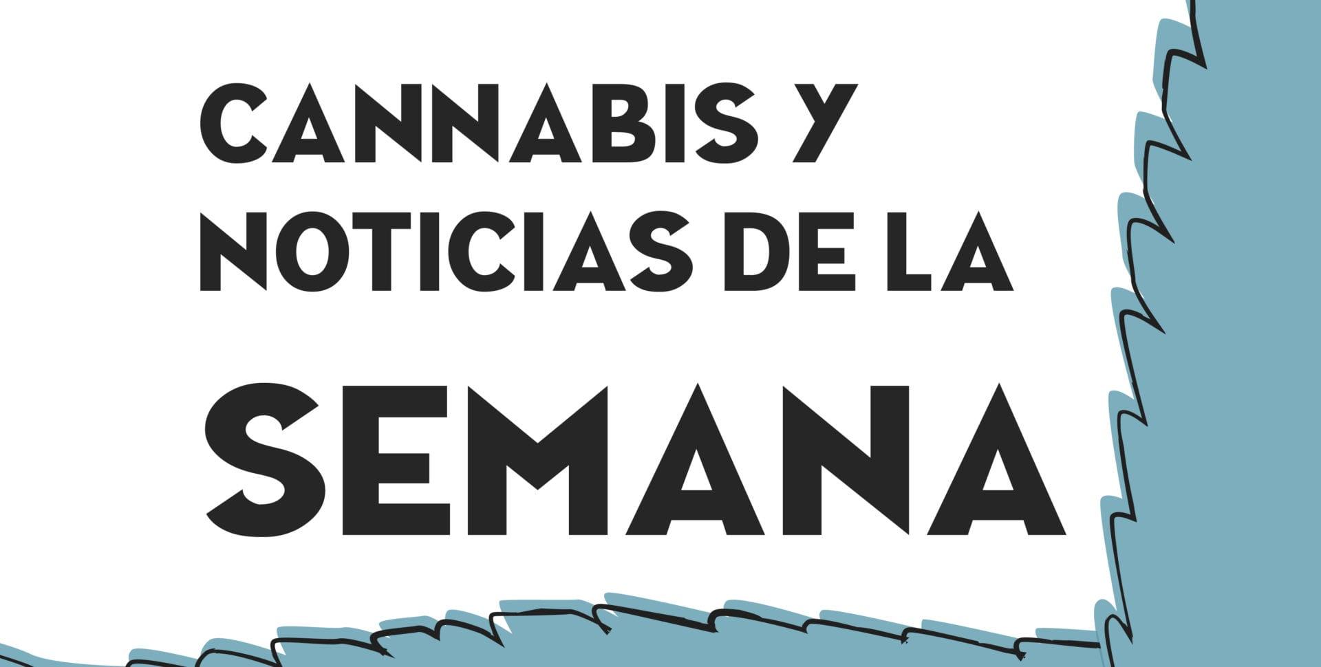 Noticias de Cannabis