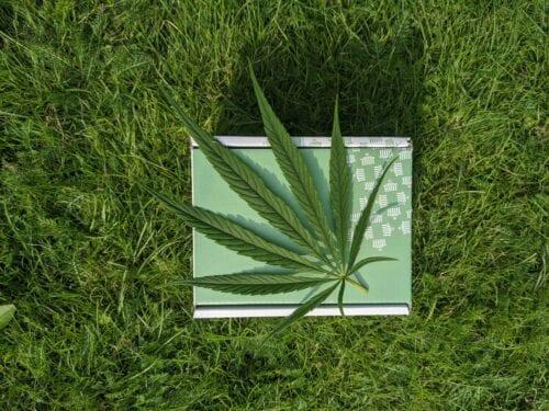 Fallo Cannabis Córdoba