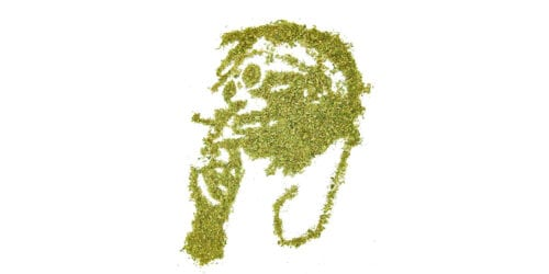 Medicinal en el Rap