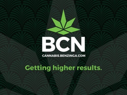directorio de empresas de cannabis