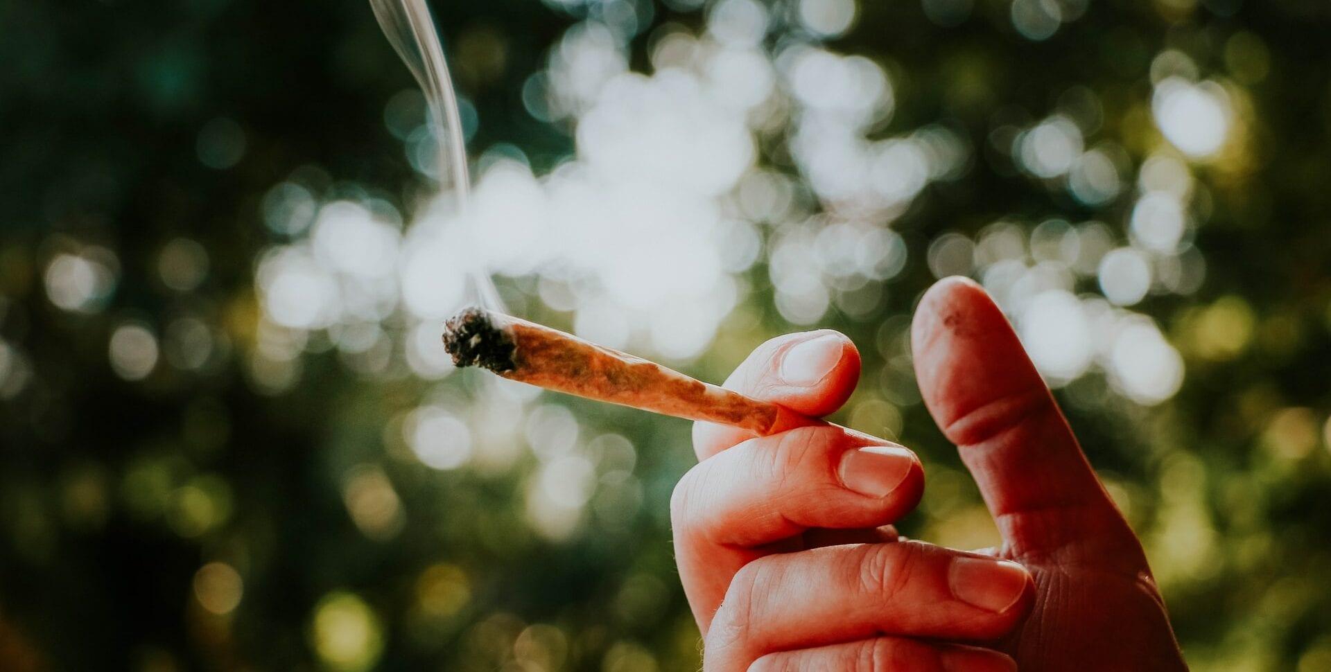 fumar cáñamo