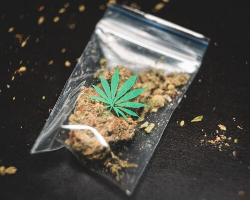 og kush marihuana