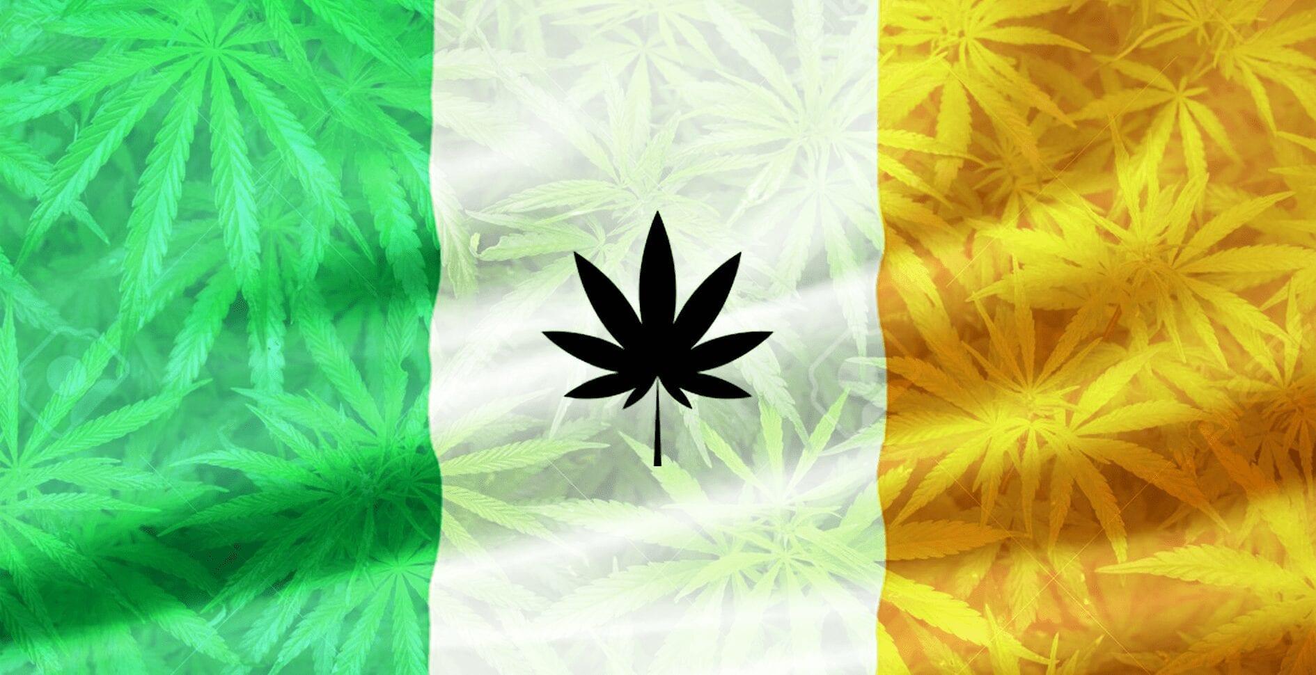 marihuana irlanda cannabis medicinal