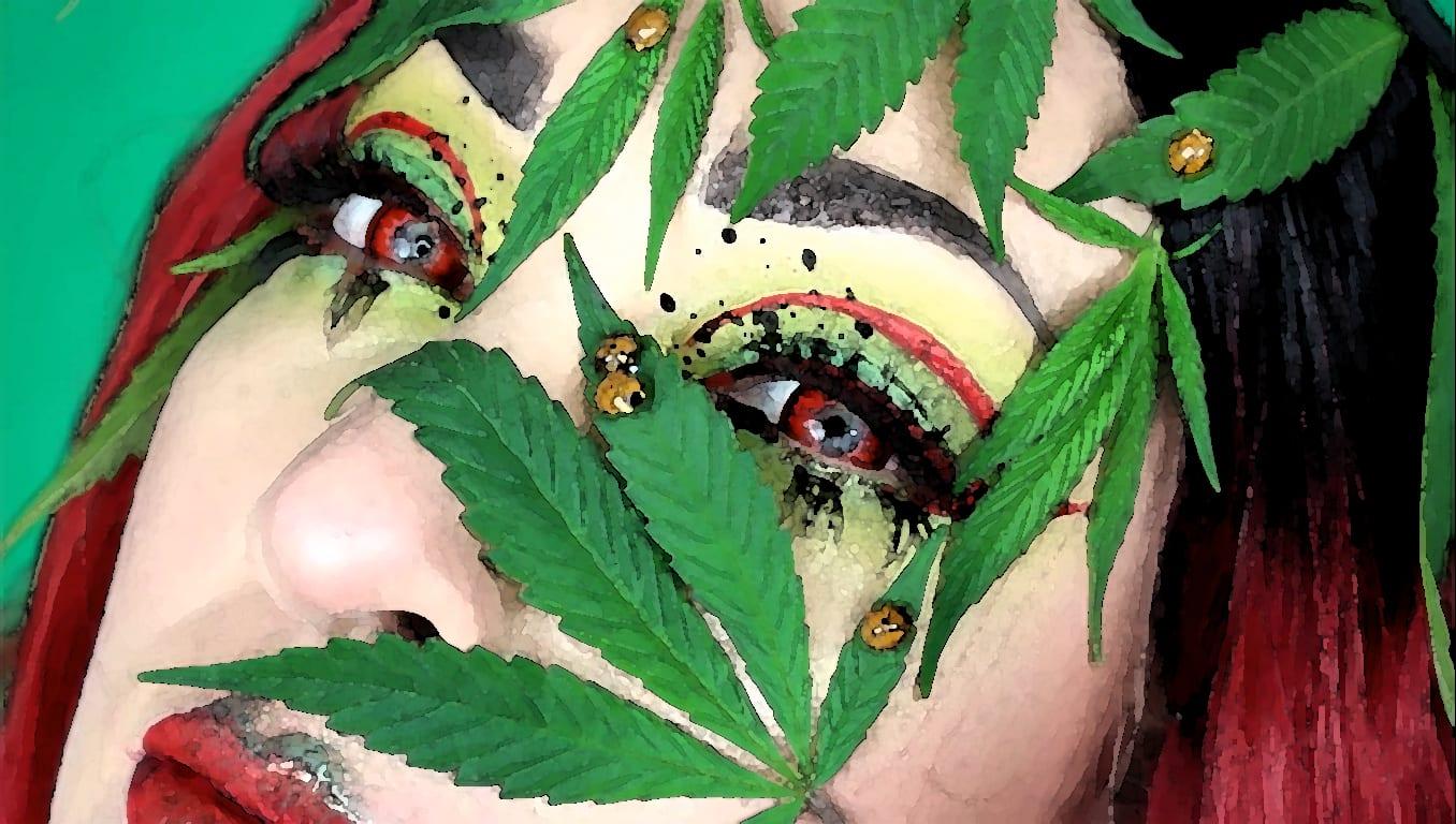 fanzine cannabis