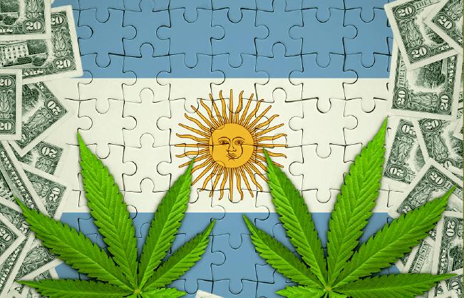 mercado cannabis argentina