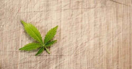 acciones cannabis
