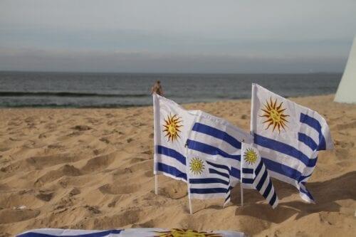 uruguay club cannábico