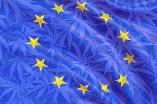 cáñamo cannabis unión europea