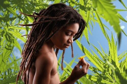 kenia marihuana rastafaris