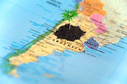 congreso cannabis argentina
