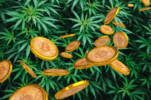 marihuana bitcoin