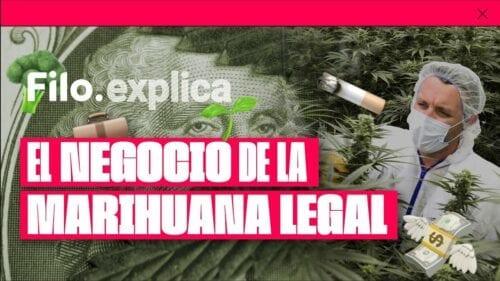 por qué la marihuana debería ser legal