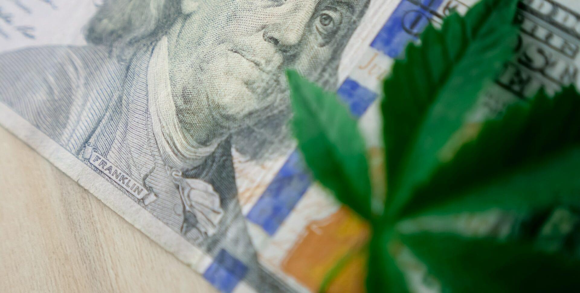 salarios cannabis