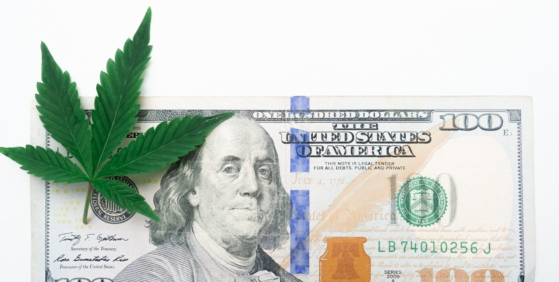 Marijuana Policy Project ventas cannabis