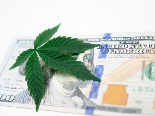 crecimiento industria cannabis
