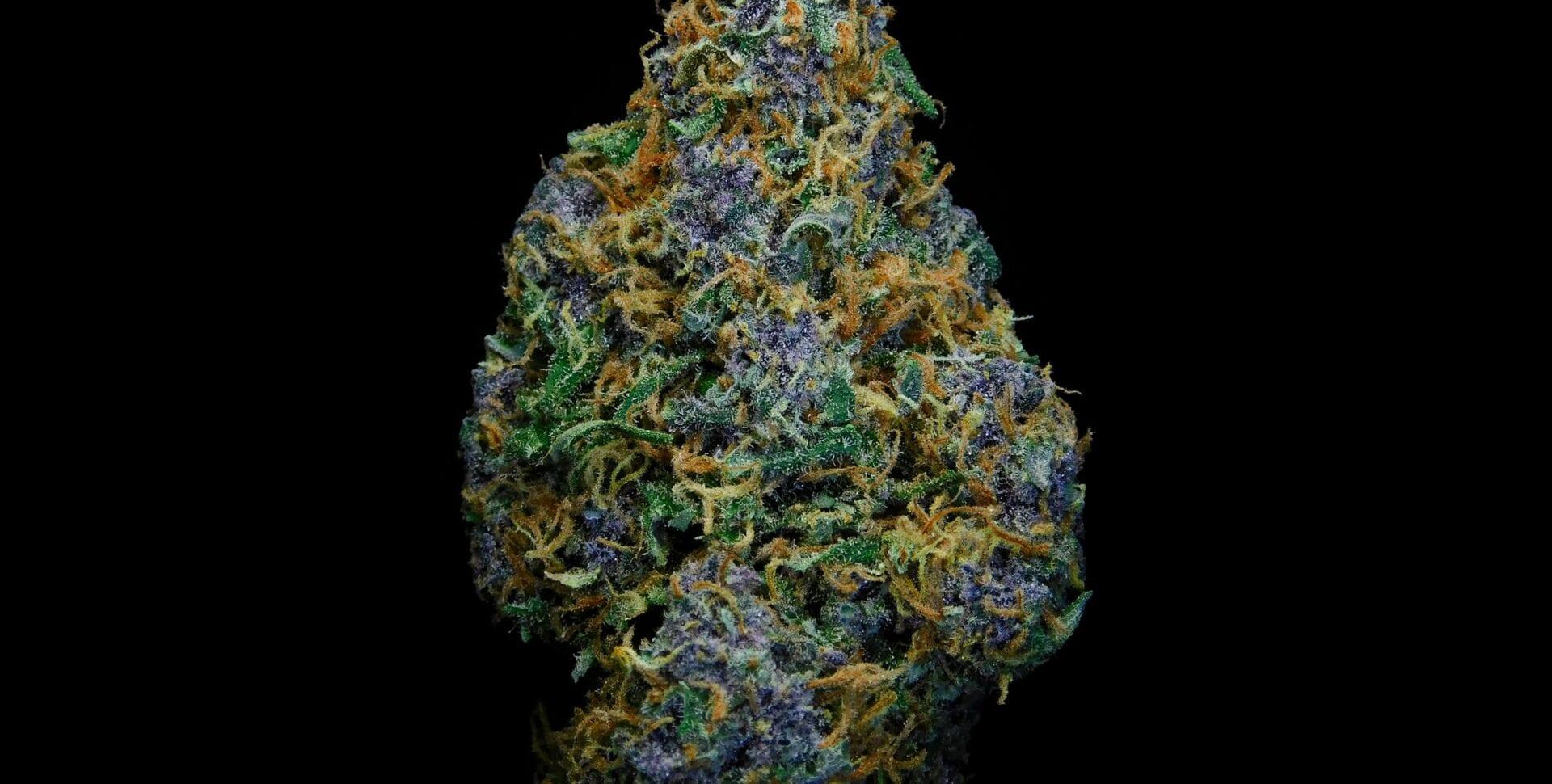 esculturas con marihuana