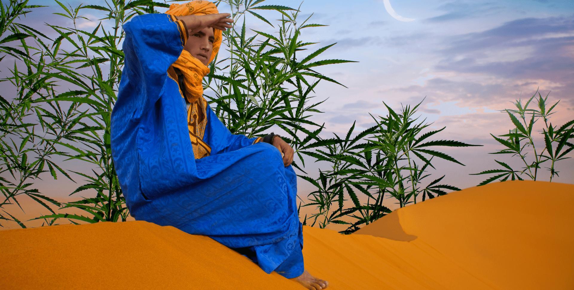 cannabis marruecos