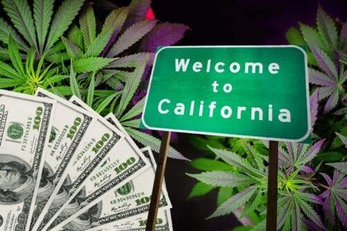 california industria cannabis licencias