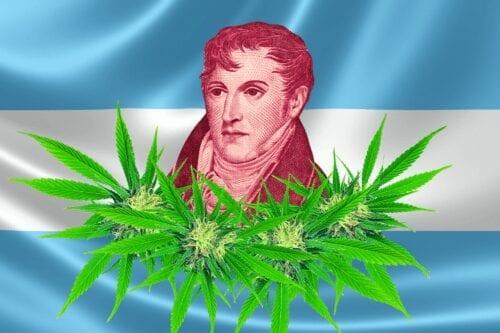 belgrano cannabis