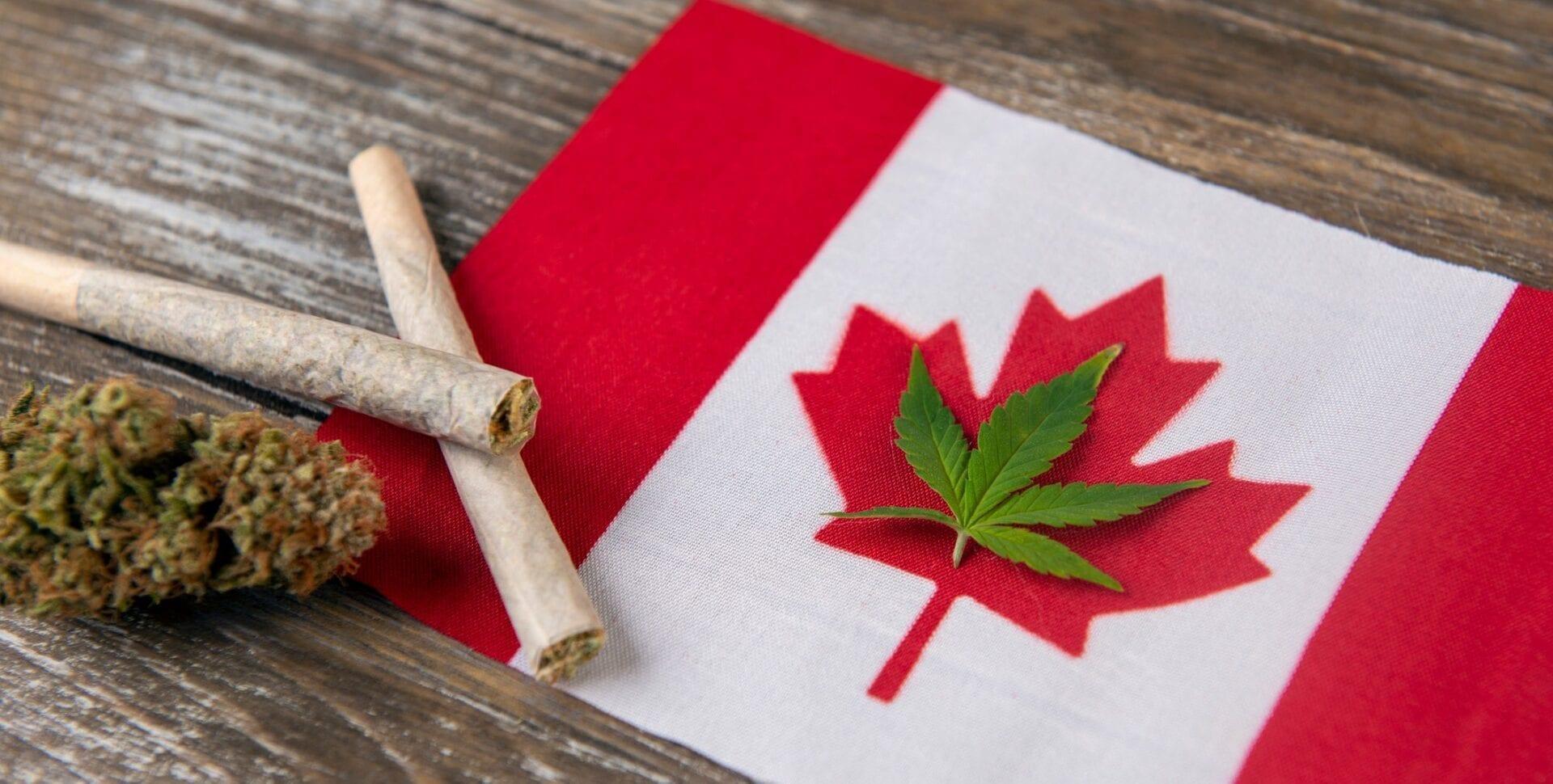marihuana canadá