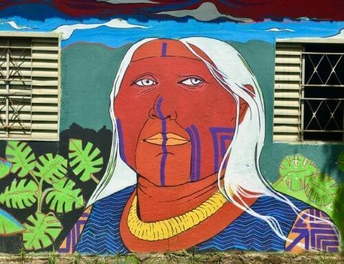 psicodélicos pueblos originarios