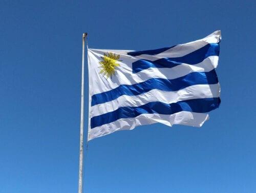 uruguay decreto cannabis marihuana