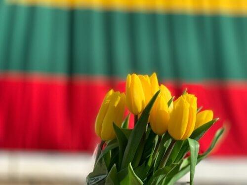 lituania cáñamo