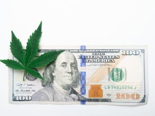 impuestos cannabis eeuu