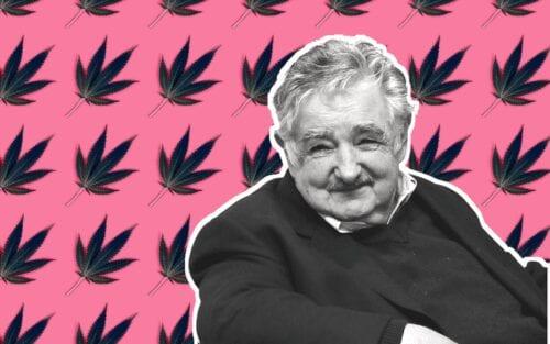 pepe mujica cannabis chile