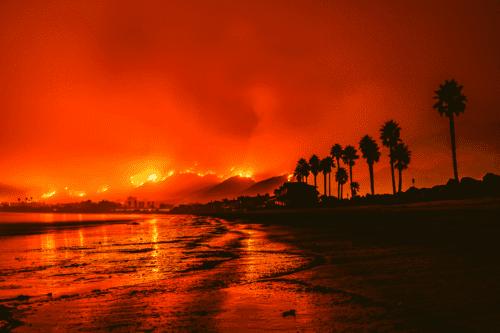 incendios cannabis california