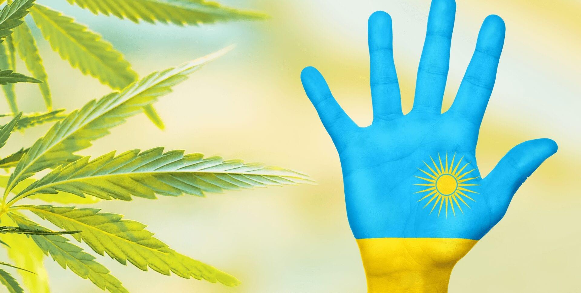 ruanda cannabis