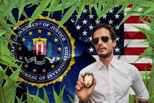 fbi marihuana