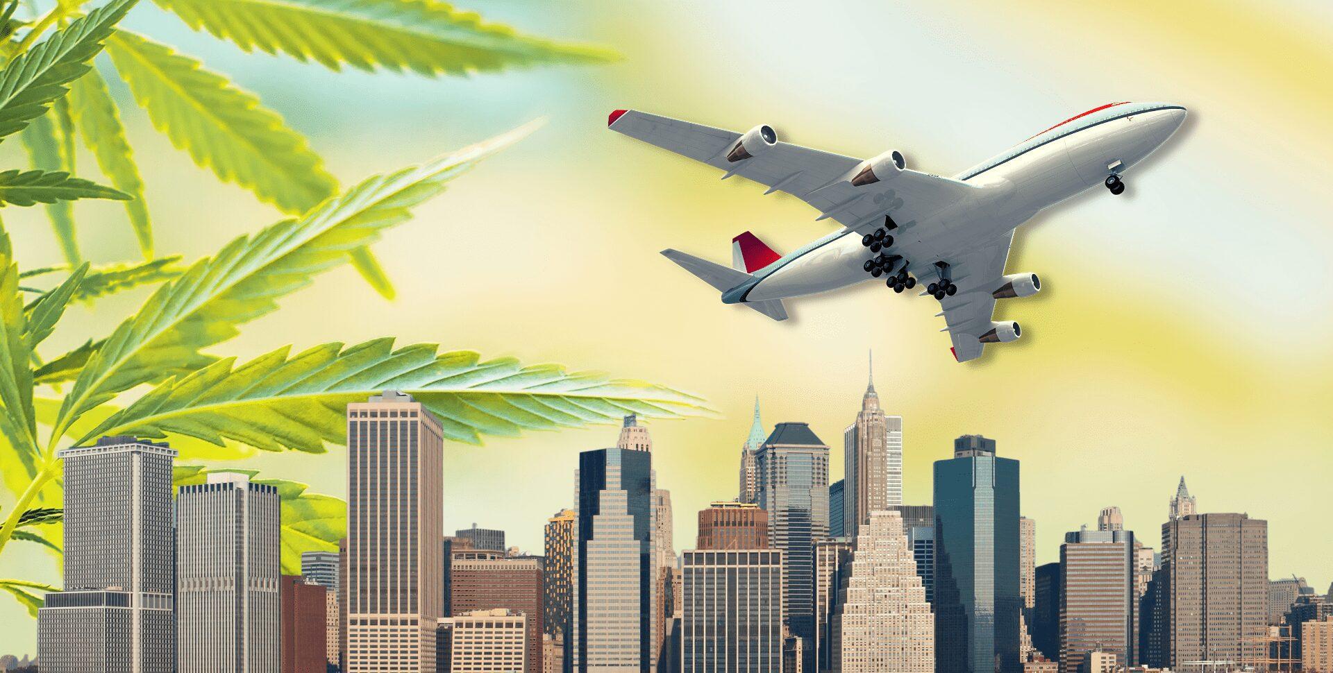 nueva york aeropuertos marihuana