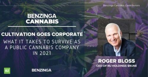 Industria del Cannabis 2021