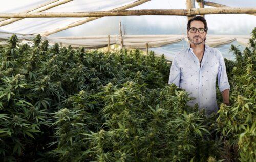 facundo garretón cannabis marihuana suzana giménez