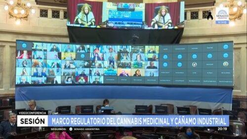 ley cáñamo industrial cannabis medicinal argentina