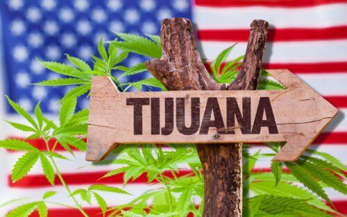 méxico marihuana california