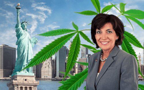 Hochul cannabis