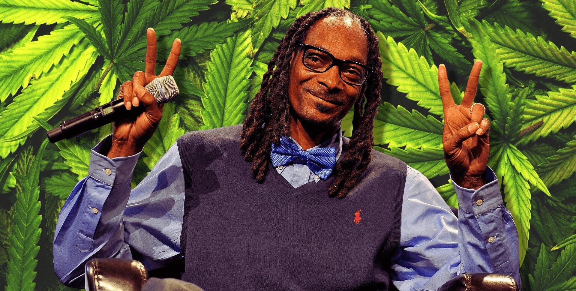 consumidores marihuana
