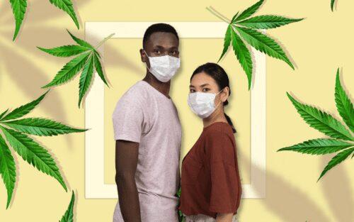 covid cannabis marihuana coronavirus