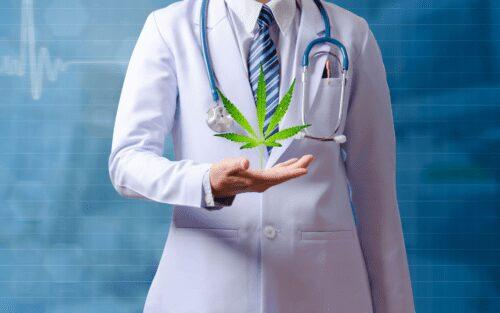 salud cannabis formación profesionales