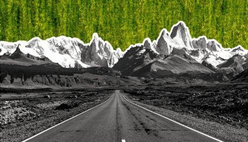cannabis provincia ruta 40 argentina