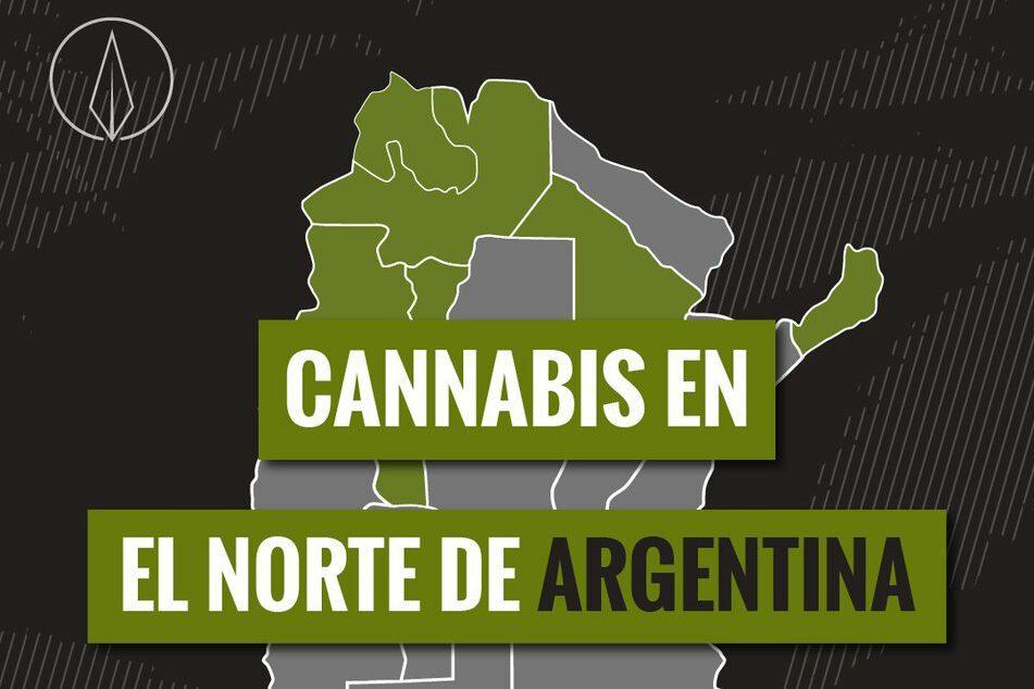 cannabis noroeste
