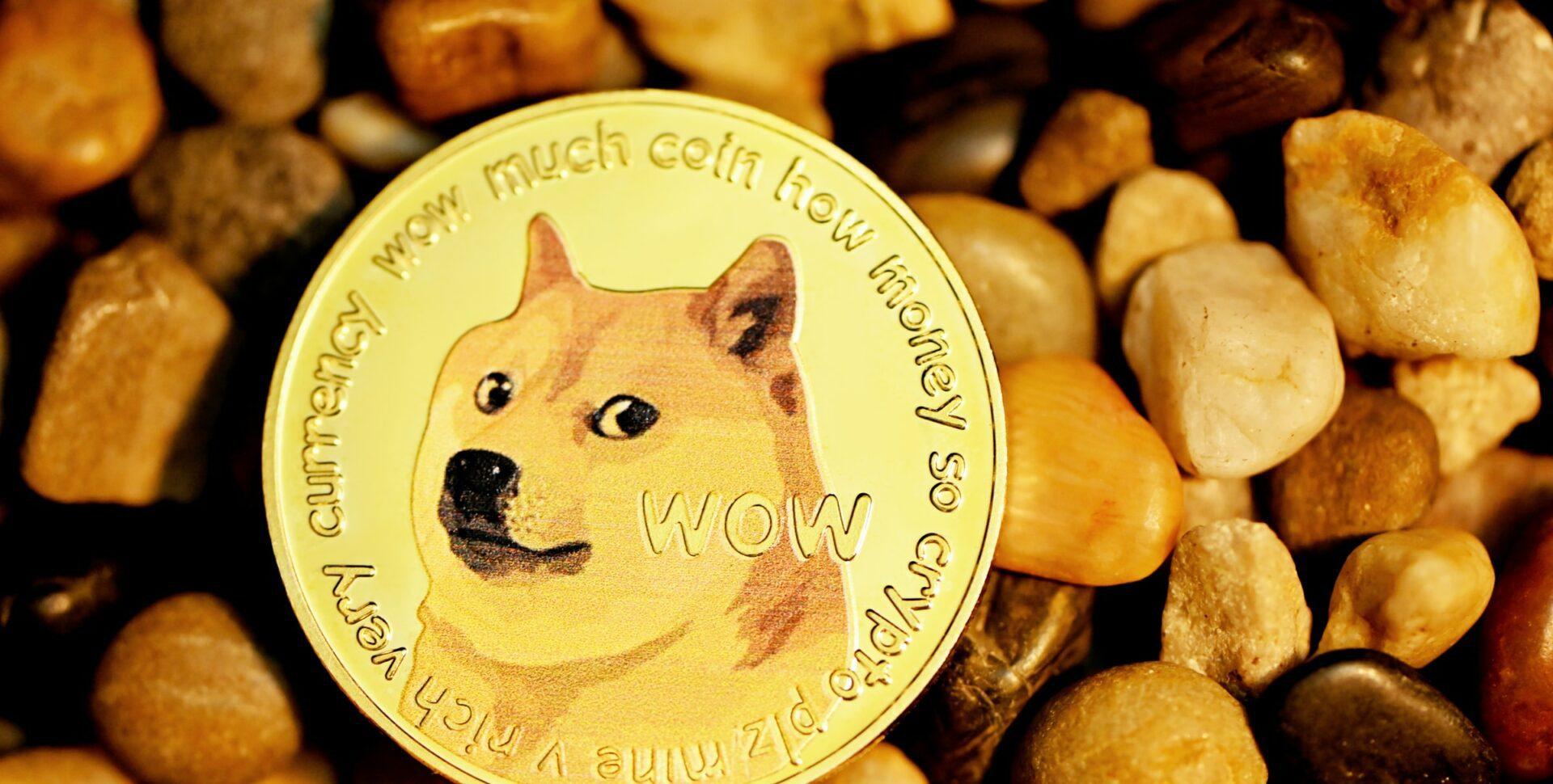 tweet dorsey doge