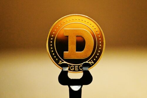 dogecoin superara bitcoin crypto dog