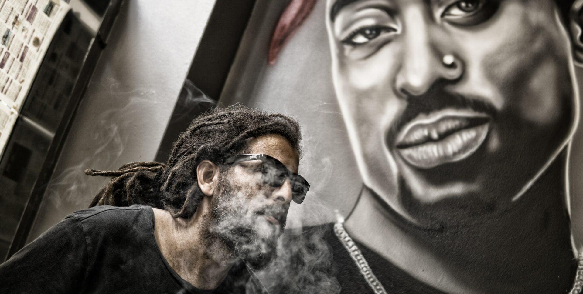 freestyle cannabis